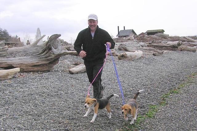 Beagles on the Beach